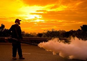 Fumigar Mosquitos